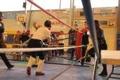 Compétition de boxe française
